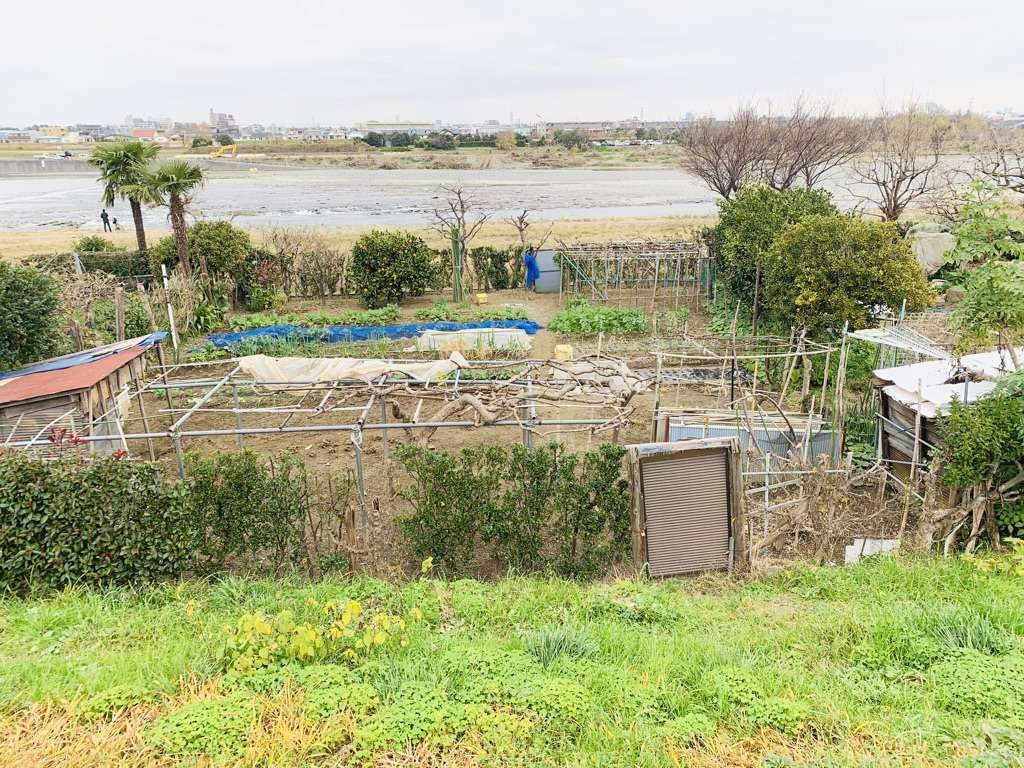 Community garden on the Tama River