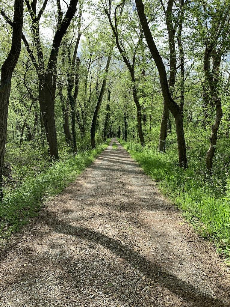 Antietam Creek Canal Path